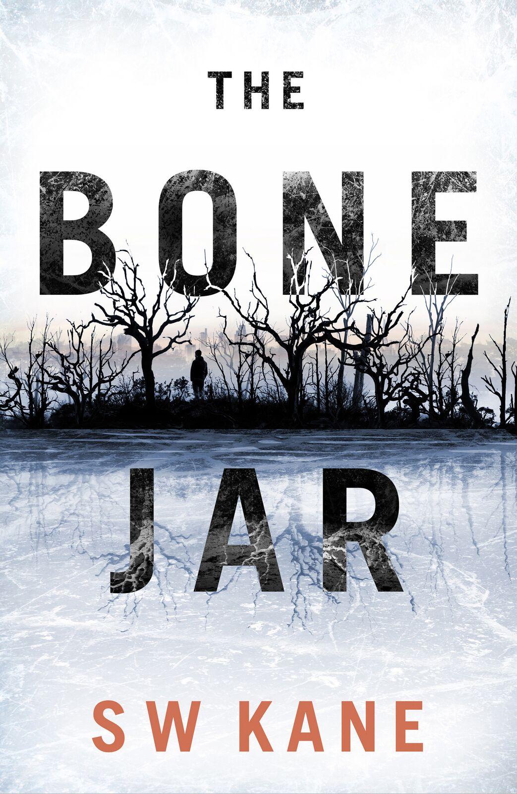 Cover art for The Bone Jar