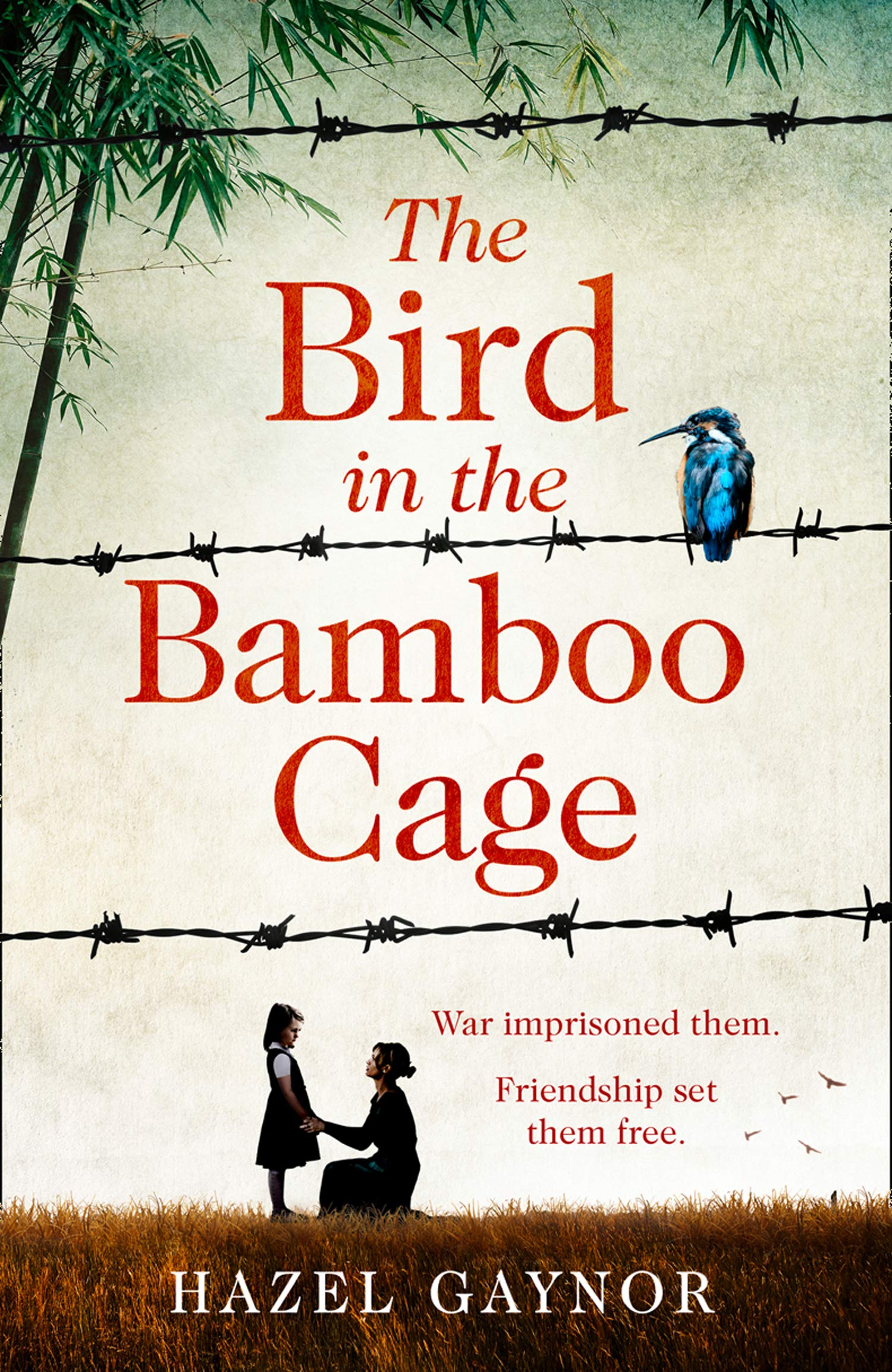 Cover Art for The Bird in the Bamboo Cage