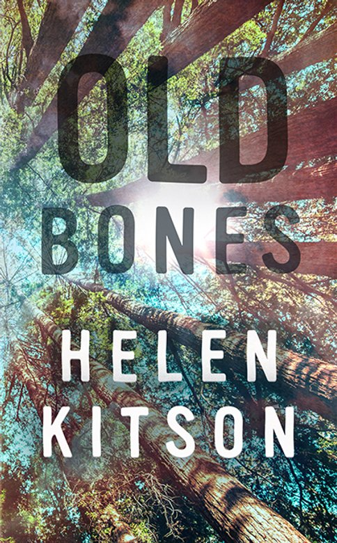 Cover art for Old Bones