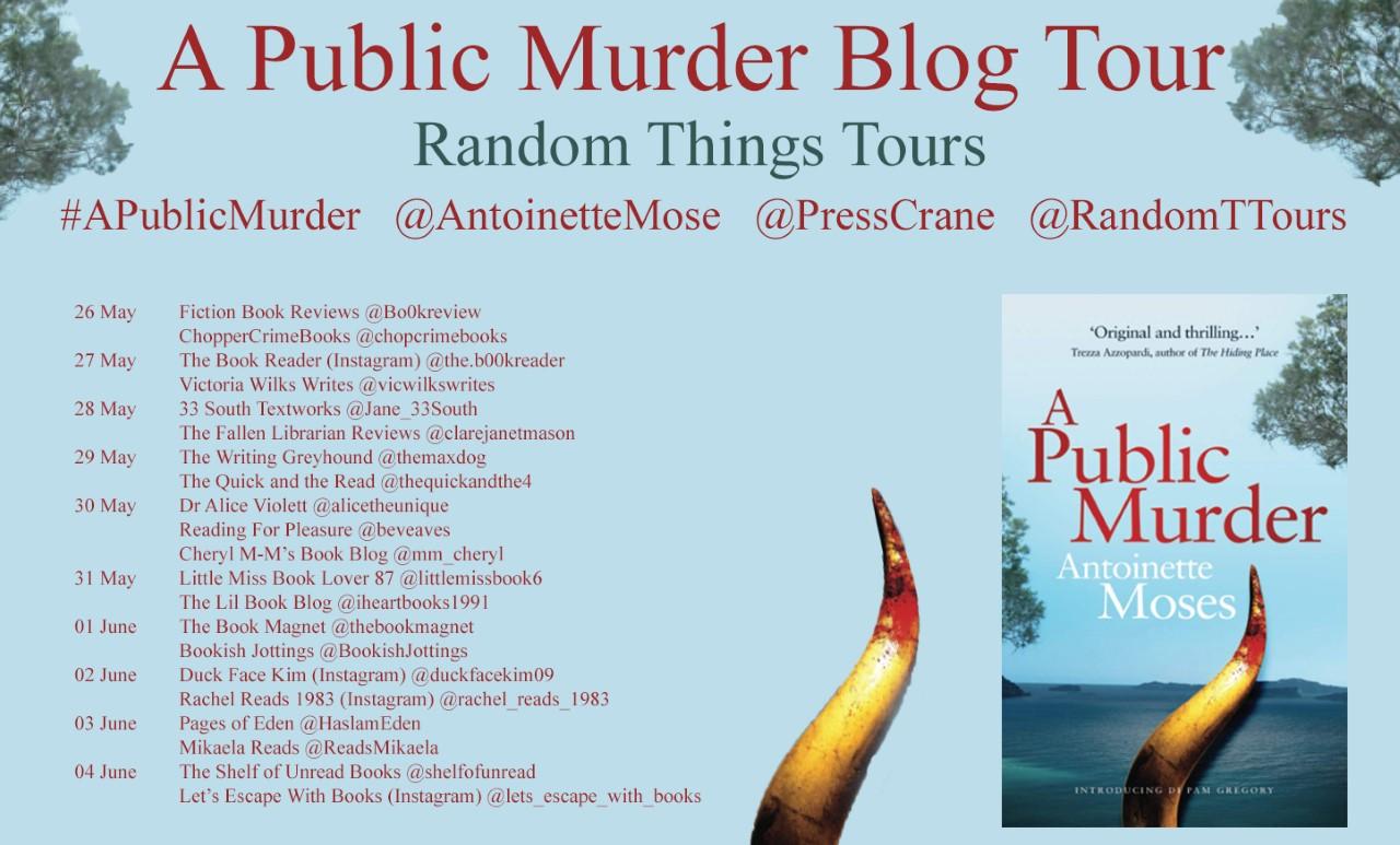 Blog Tour for A Public Murder