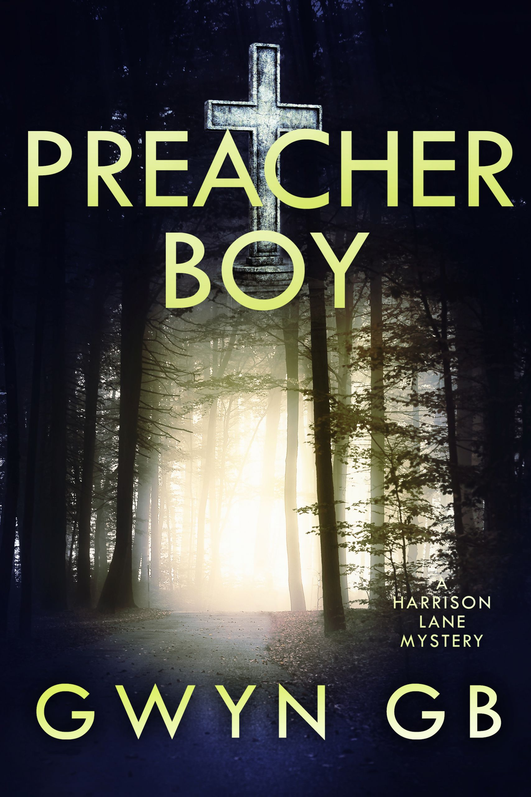 Cover Art for Preacher Boy