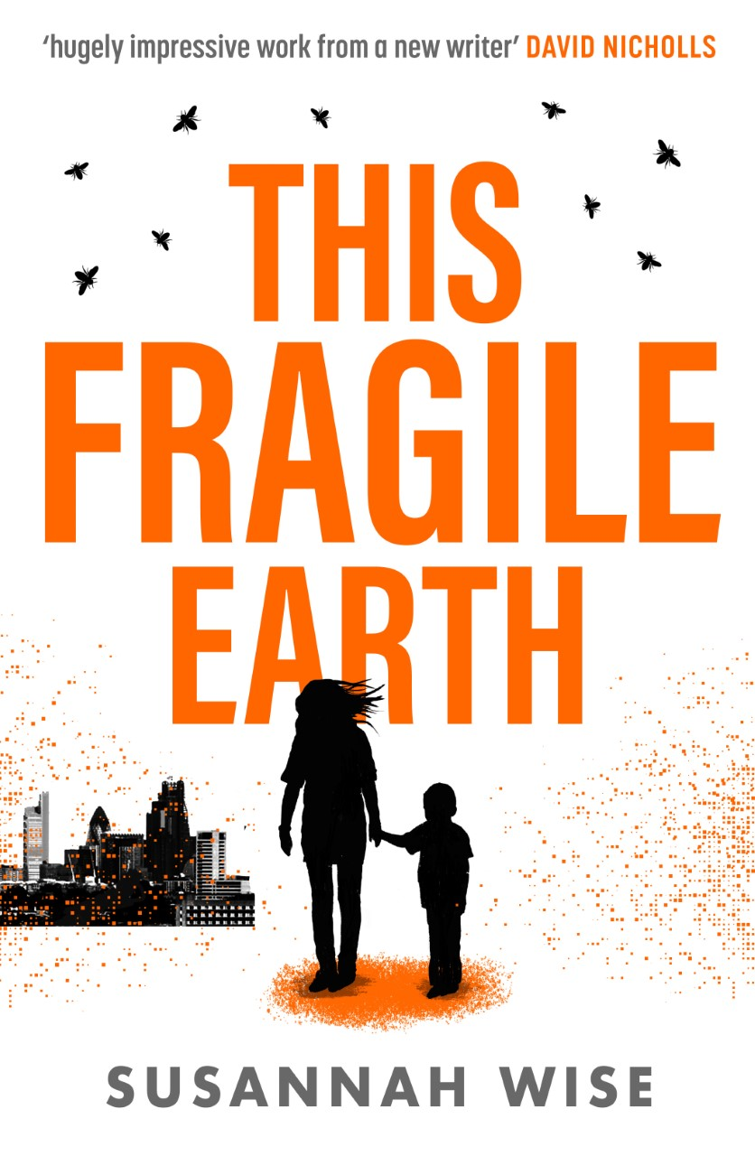 Cover Art for This Fragile Earth